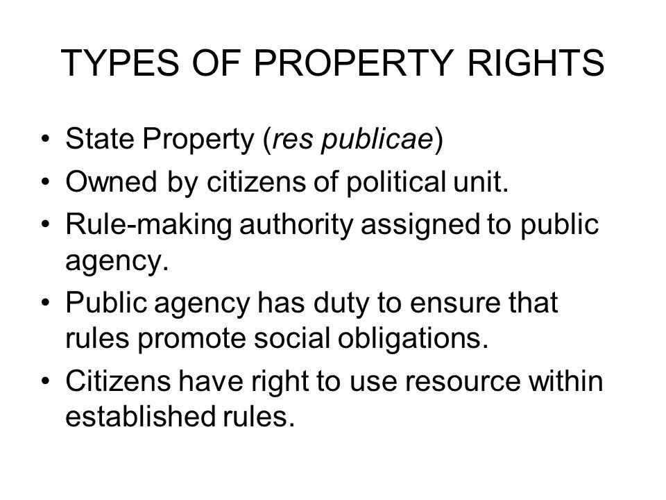 TYPES OF PROPERTY RIGHTS State Property (res publicae) Owned by citizens of political unit.