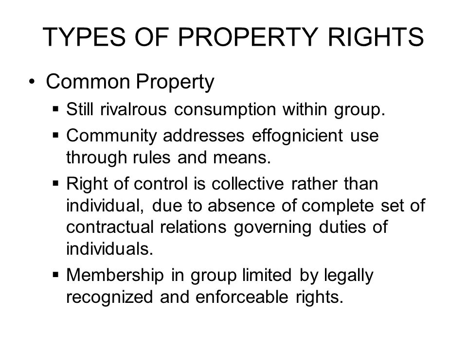 TYPES OF PROPERTY RIGHTS Common Property  Still rivalrous consumption within group.