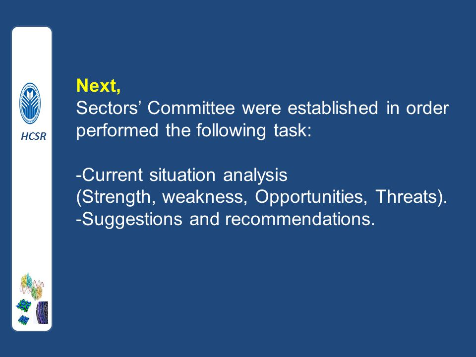 Next, Sectors' Committee were established in order performed the following task: -Current situation analysis (Strength, weakness, Opportunities, Threats).