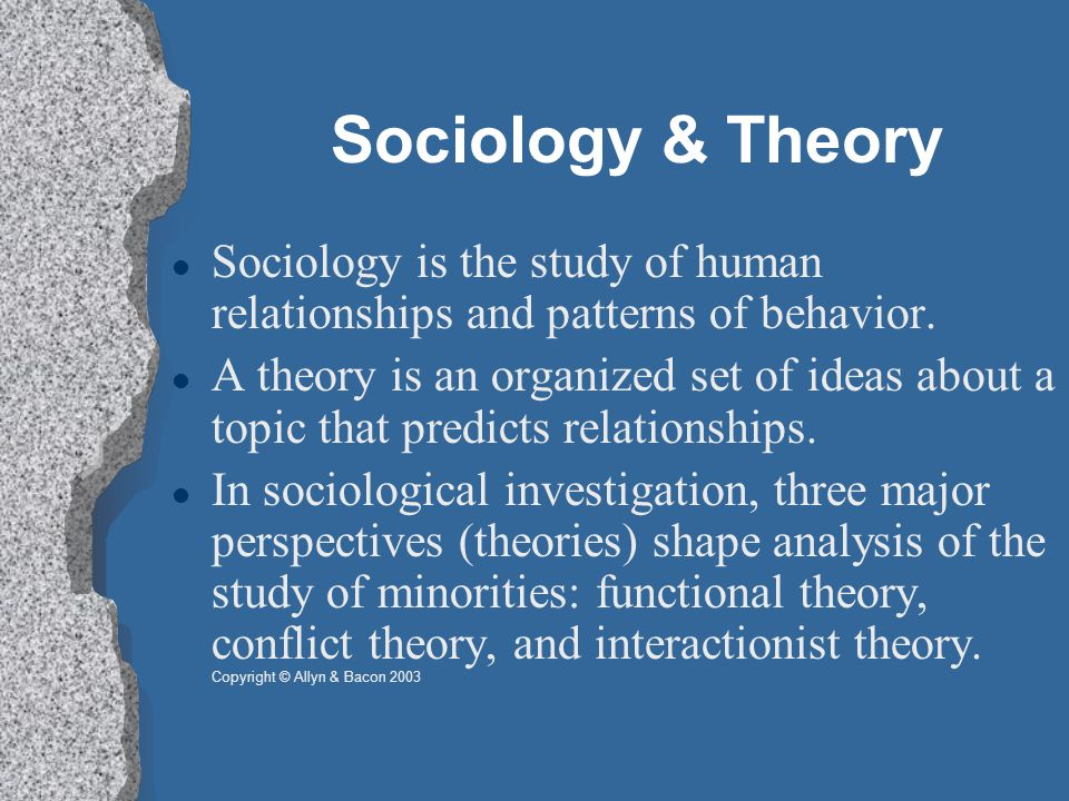 Sociology & Theory Sociology is the study of human relationships and patterns of behavior.