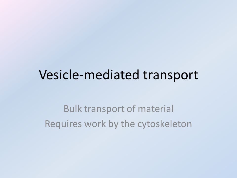 Vesicle-mediated transport Bulk transport of material Requires work by the cytoskeleton