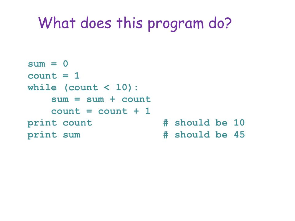 What does this program do.