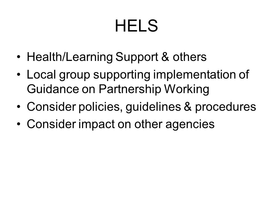 HELS Health/Learning Support & others Local group supporting implementation of Guidance on Partnership Working Consider policies, guidelines & procedures Consider impact on other agencies