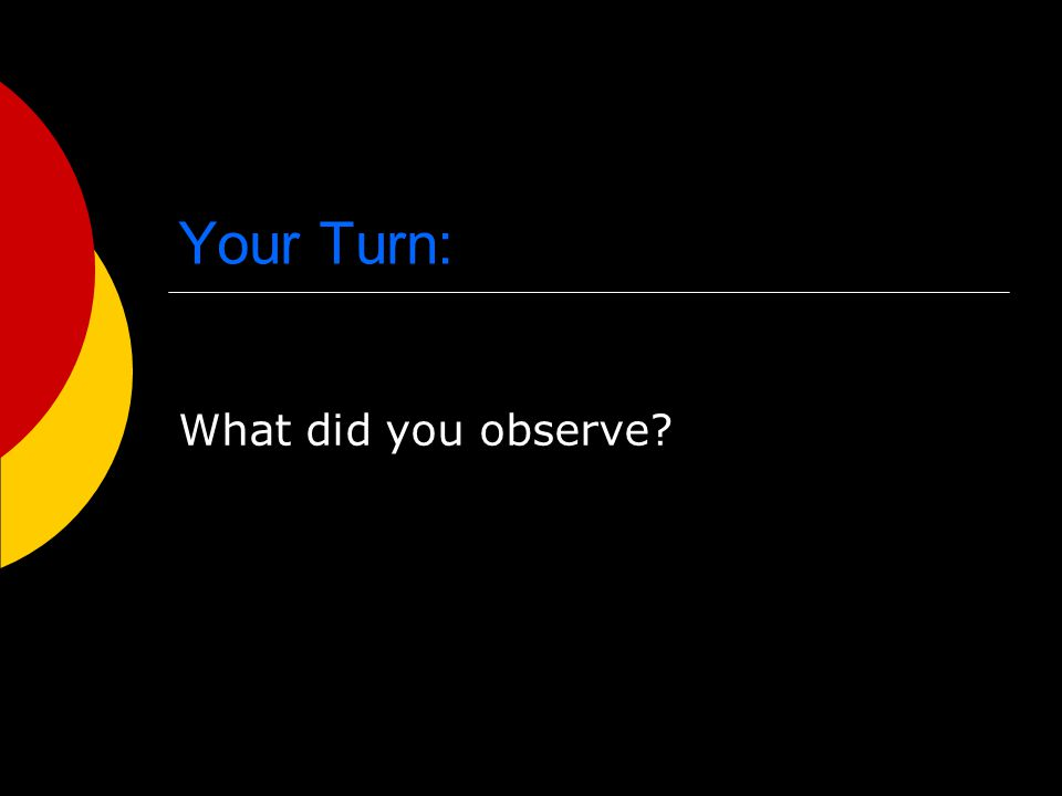 Your Turn: What did you observe
