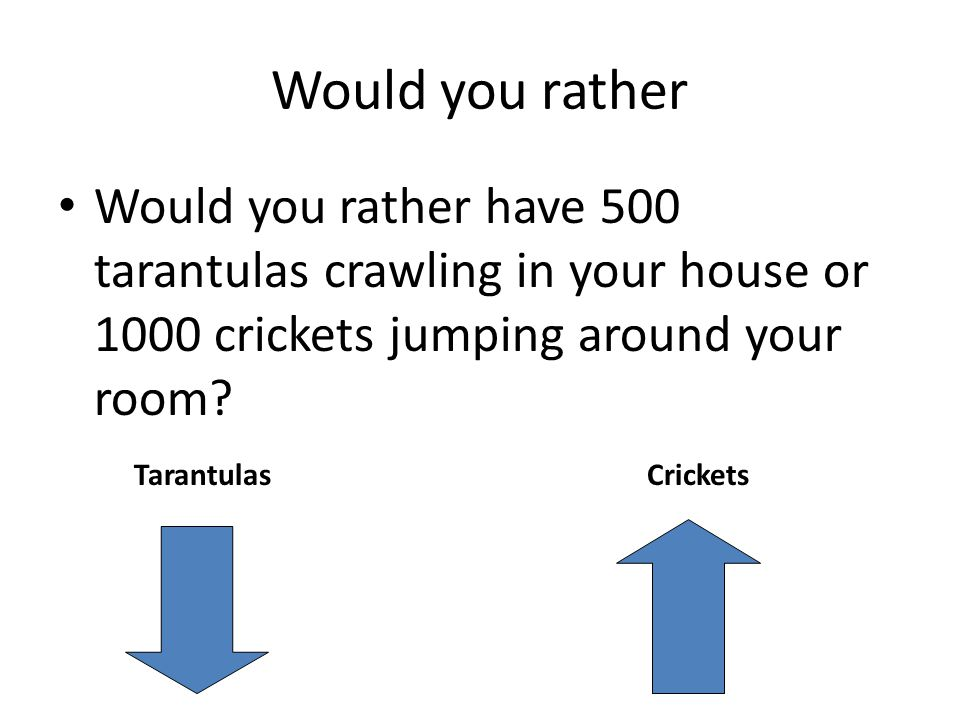 Would you rather Would you rather have 500 tarantulas crawling in your house or 1000 crickets jumping around your room.
