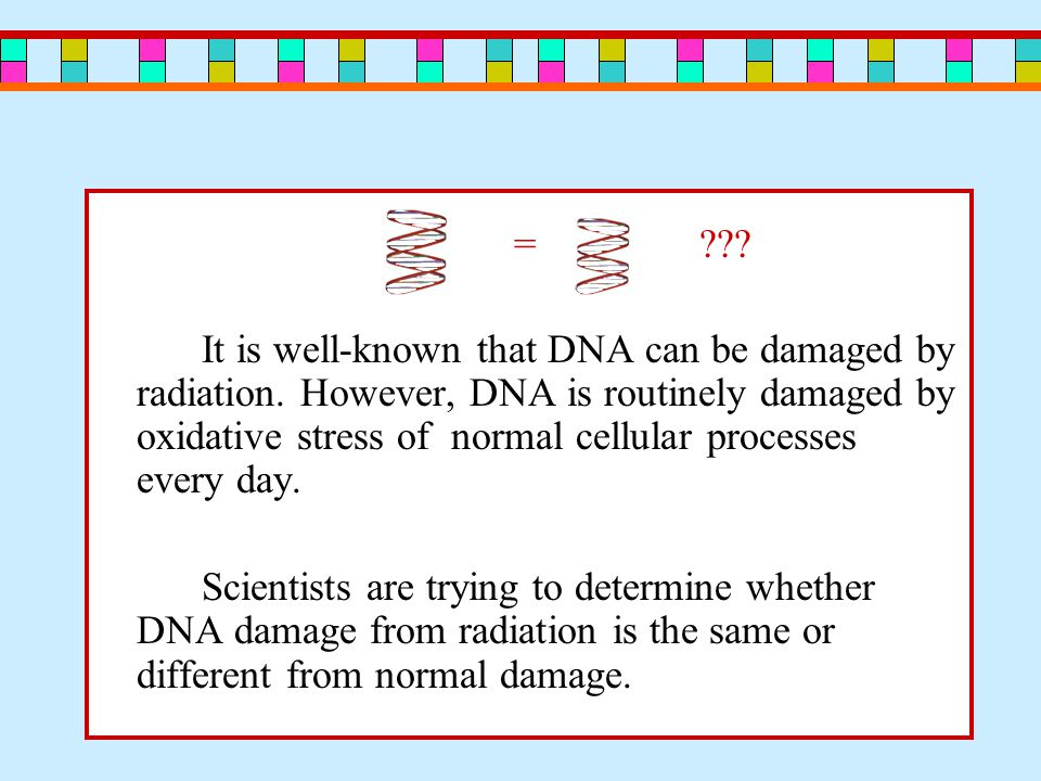 = . It is well-known that DNA can be damaged by radiation.