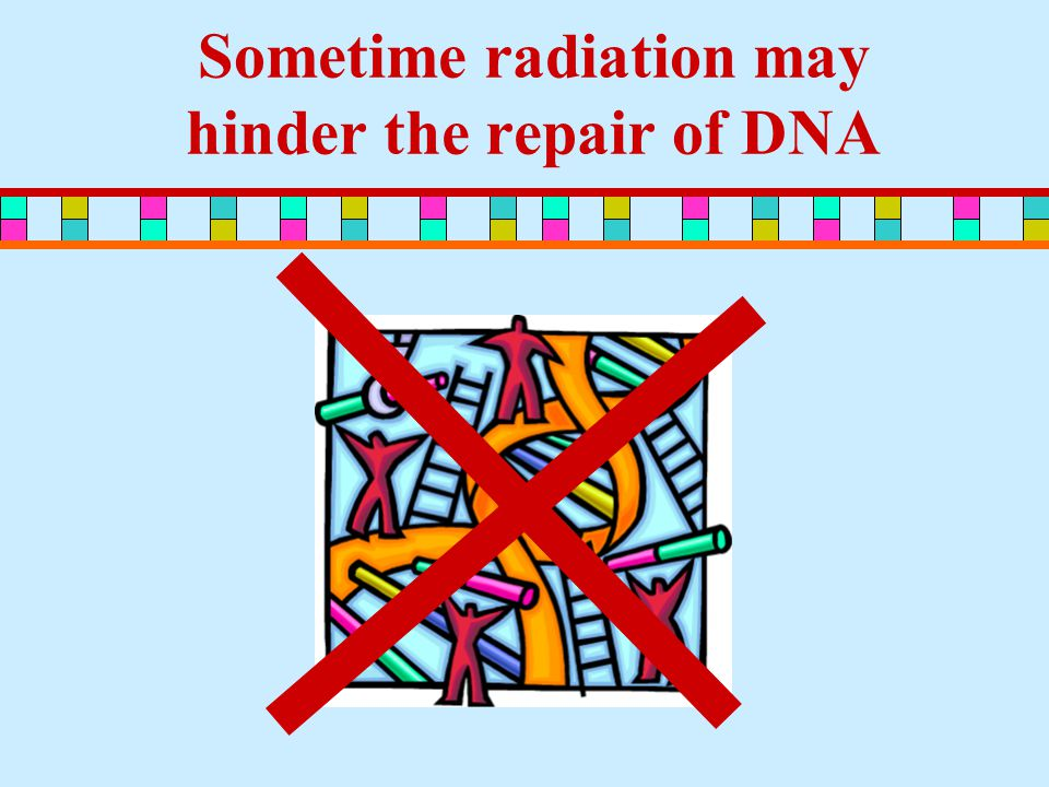 Sometime radiation may hinder the repair of DNA