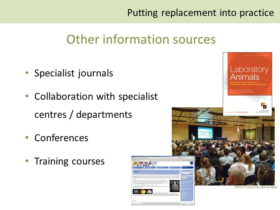 Specialist journals Collaboration with specialist centres / departments Conferences Training courses RSPCA Photolibrary/BarneyReed Putting replacement into practice Other information sources