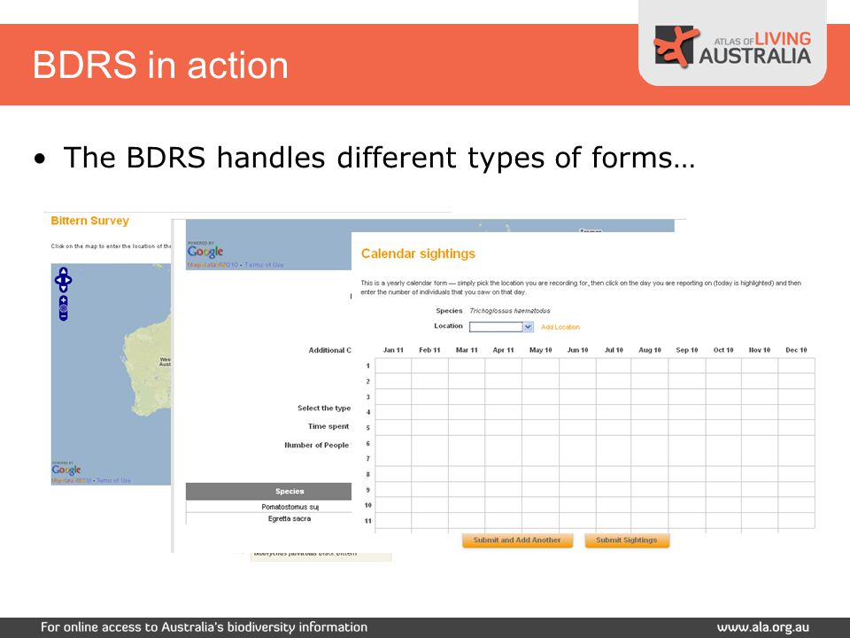 BDRS in action The BDRS handles different types of forms…