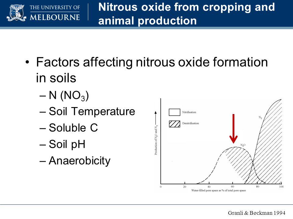 Nitrous oxide from cropping and animal production Factors affecting nitrous oxide formation in soils –N (NO 3 ) –Soil Temperature –Soluble C –Soil pH –Anaerobicity Granli & Bøckman 1994