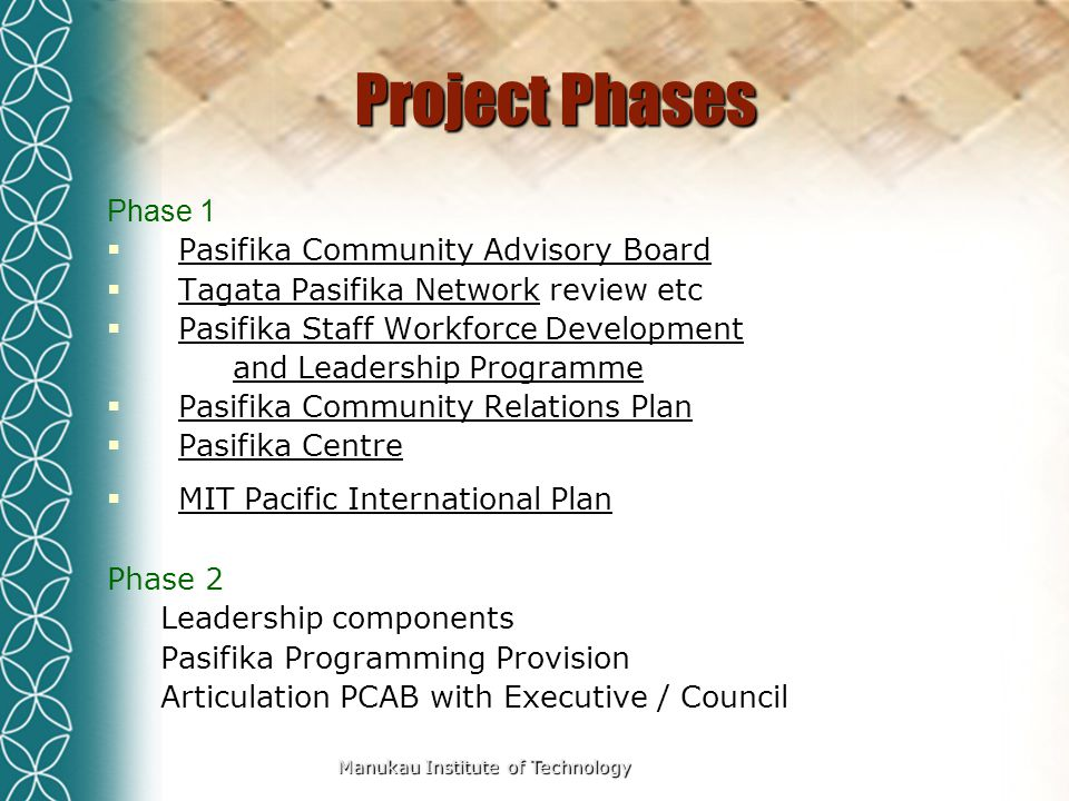Manukau Institute of Technology Project Phases Phase 1  Pasifika Community Advisory Board  Tagata Pasifika Network review etc  Pasifika Staff Workforce Development and Leadership Programme  Pasifika Community Relations Plan  Pasifika Centre  MIT Pacific International Plan Phase 2 Leadership components Pasifika Programming Provision Articulation PCAB with Executive / Council