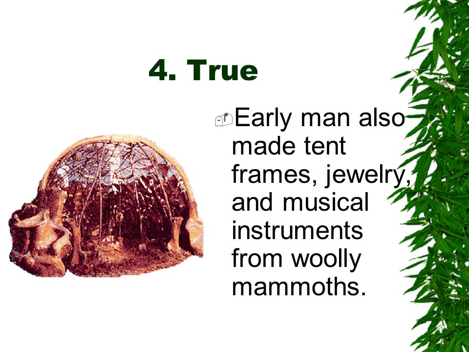 4. True or False  Prehistoric man hunted woolly mammoths for food.