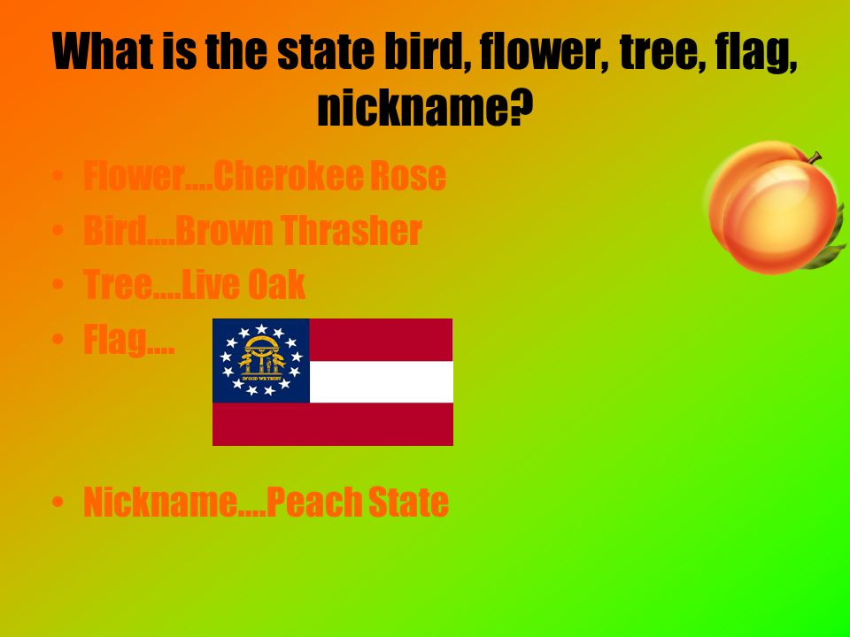 What is the state bird, flower, tree, flag, nickname.