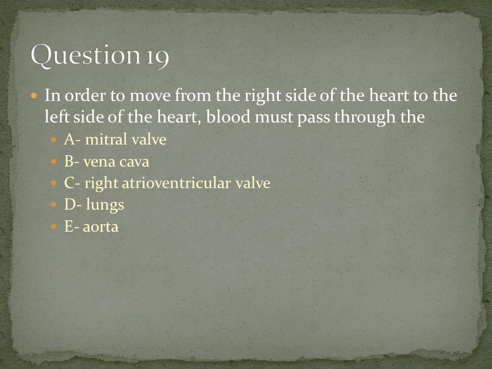 In order to move from the right side of the heart to the left side of the heart, blood must pass through the A- mitral valve B- vena cava C- right atrioventricular valve D- lungs E- aorta