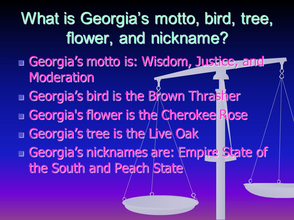 What is Georgia's motto, bird, tree, flower, and nickname.