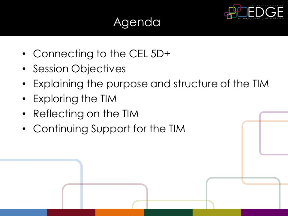 Agenda Connecting to the CEL 5D+ Session Objectives Explaining the purpose and structure of the TIM Exploring the TIM Reflecting on the TIM Continuing Support for the TIM