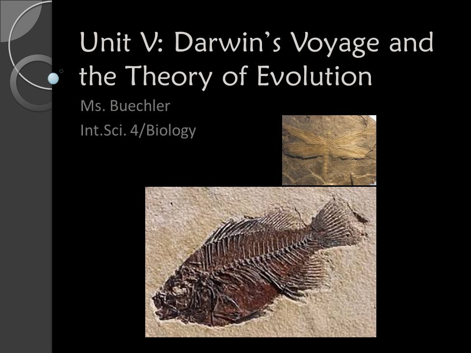 Unit V: Darwin's Voyage and the Theory of Evolution Ms. Buechler Int.Sci. 4/Biology