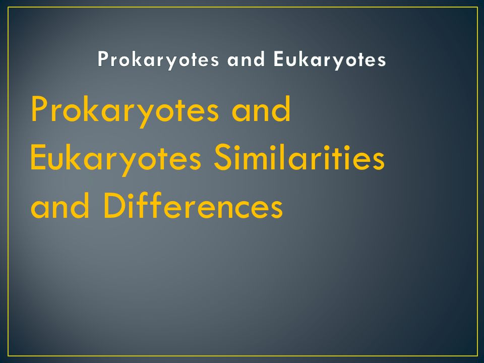 Prokaryotes: simple organism without nucleus: an organism whose DNA is not contained within a nucleus, e.g.