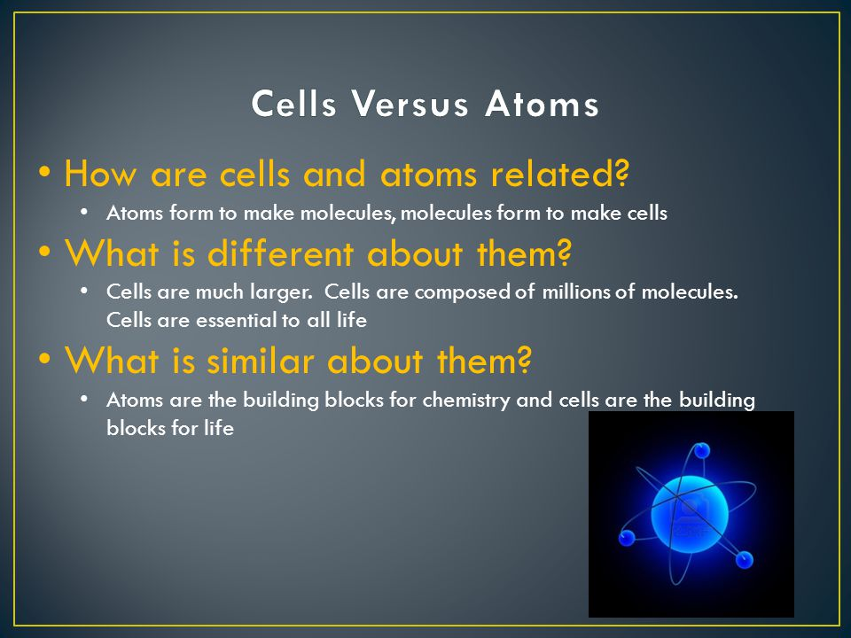 How are cells and atoms related What is different about them What is similar about them