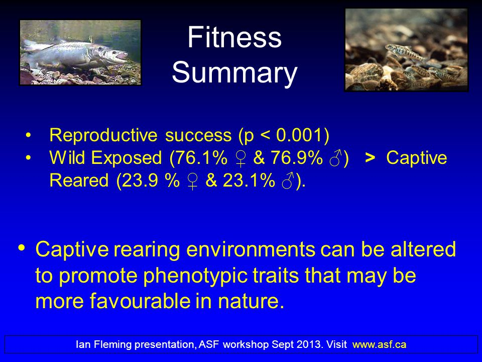 Fitness Summary Captive rearing environments can be altered to promote phenotypic traits that may be more favourable in nature.