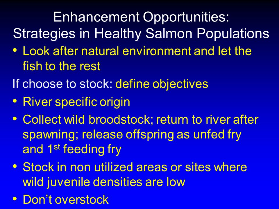 Enhancement Opportunities: Strategies in Healthy Salmon Populations Look after natural environment and let the fish to the rest If choose to stock: define objectives River specific origin Collect wild broodstock; return to river after spawning; release offspring as unfed fry and 1 st feeding fry Stock in non utilized areas or sites where wild juvenile densities are low Don't overstock