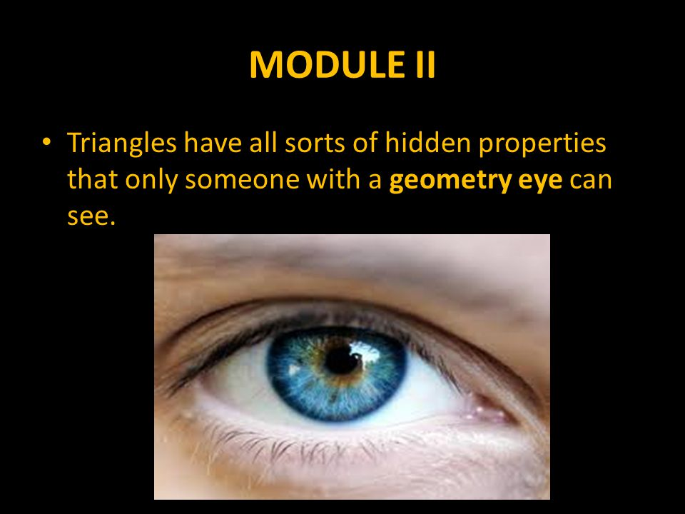 MODULE II Triangles have all sorts of hidden properties that only someone with a geometry eye can see.