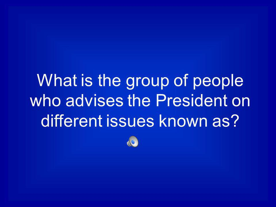 What is the group of people who advises the President on different issues known as
