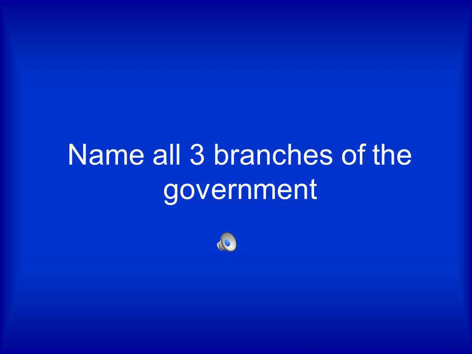 Name all 3 branches of the government