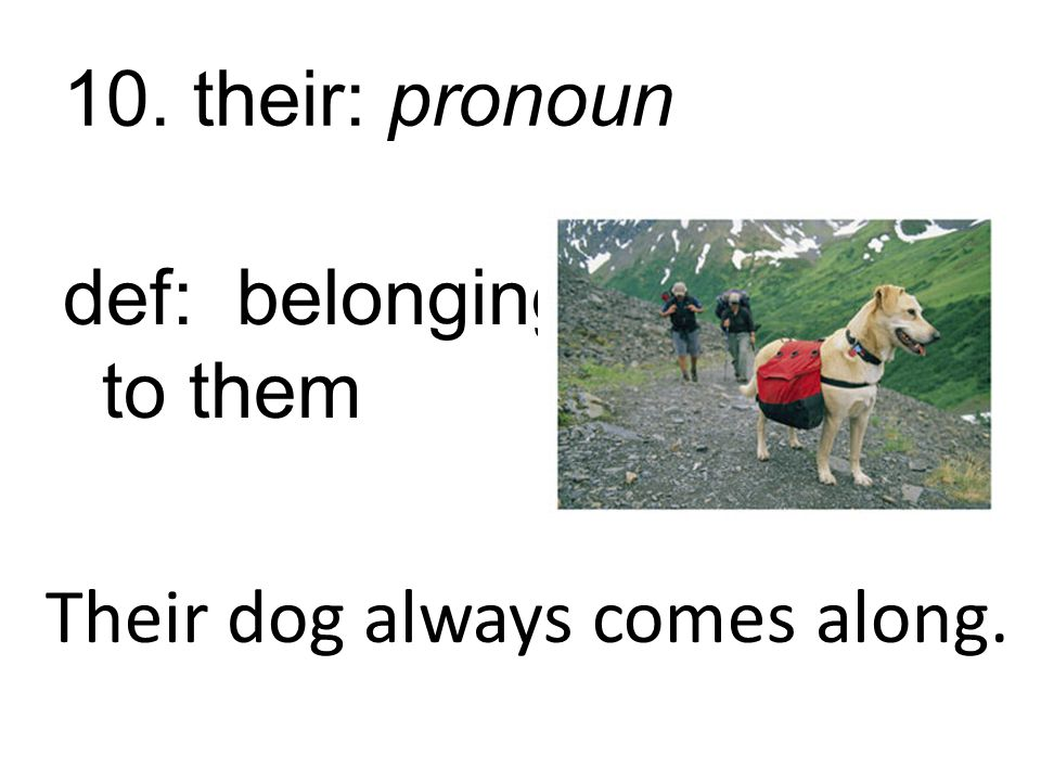 10. their: pronoun def: belonging to them Their dog always comes along.