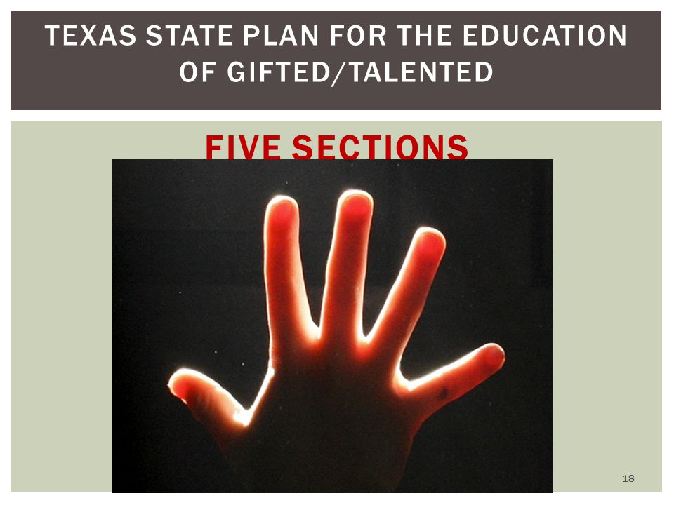 TEXAS STATE PLAN FOR THE EDUCATION OF GIFTED/TALENTED FIVE SECTIONS 18