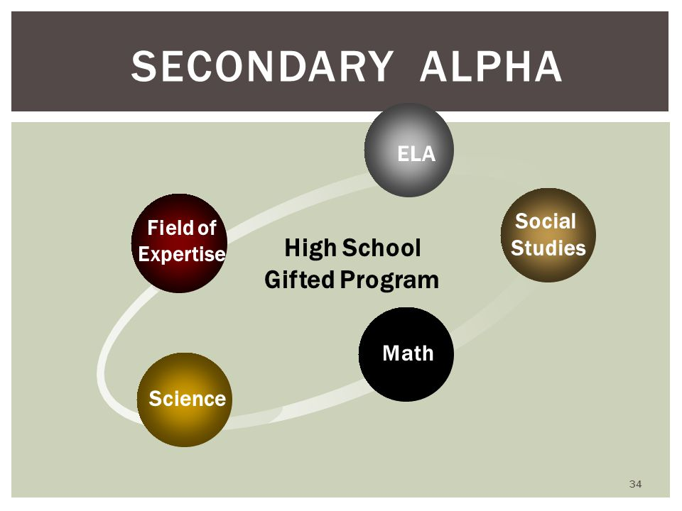 SECONDARY ALPHA Math ELA Science Social Studies High School Gifted Program Field of Expertise 34