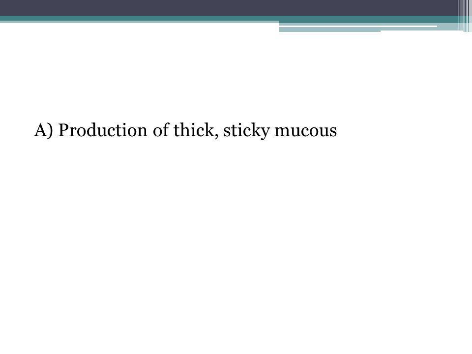 A) Production of thick, sticky mucous