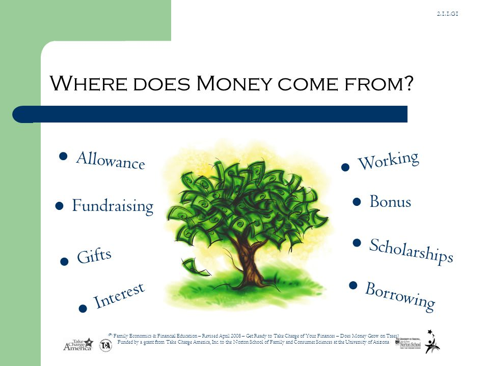 2.1.1.G1 © Family Economics & Financial Education – Revised April 2008 – Get Ready to Take Charge of Your Finances – Does Money Grow on Trees.