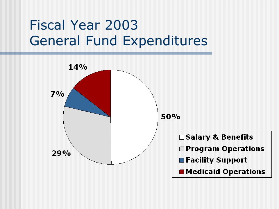 Fiscal Year 2003 General Fund Expenditures