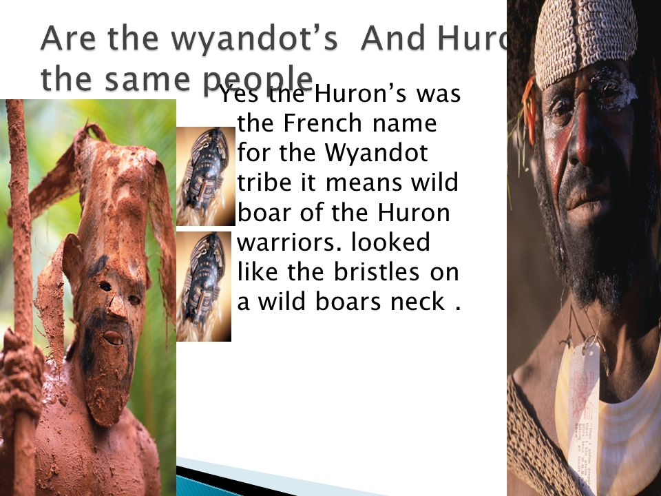 Yes the Huron's was the French name for the Wyandot tribe it means wild boar of the Huron warriors.