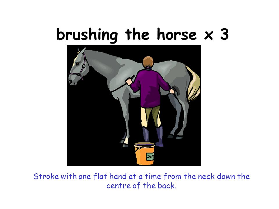 brushing the horse x 3 Stroke with one flat hand at a time from the neck down the centre of the back.