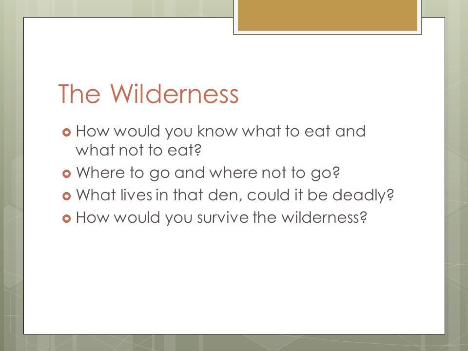 The Wilderness  How would you know what to eat and what not to eat.