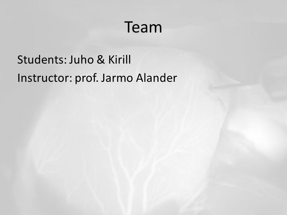 Team Students: Juho & Kirill Instructor: prof. Jarmo Alander