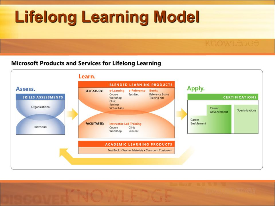 Lifelong Learning Model