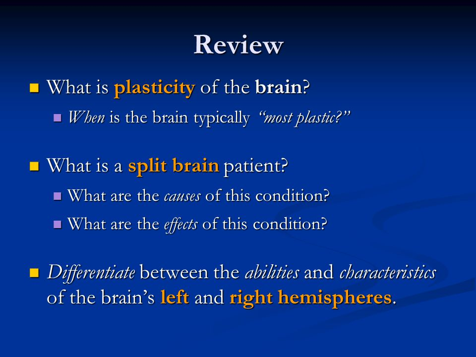 Review What is plasticity of the brain. What is plasticity of the brain.