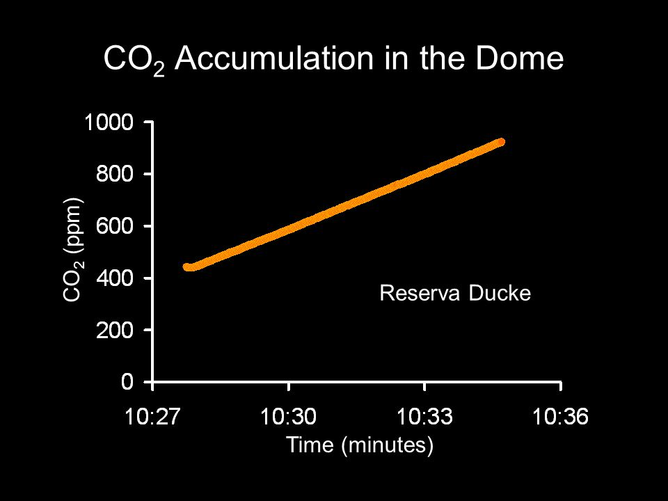 CO 2 Accumulation in the Dome Time (minutes) CO 2 (ppm) Reserva Ducke