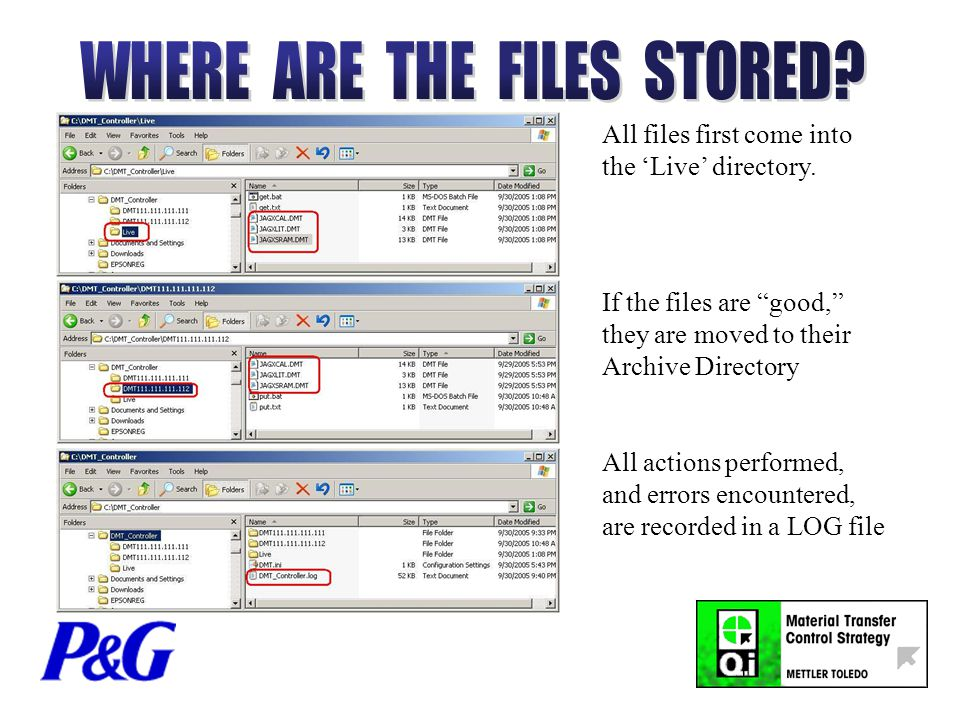 All files first come into the 'Live' directory.