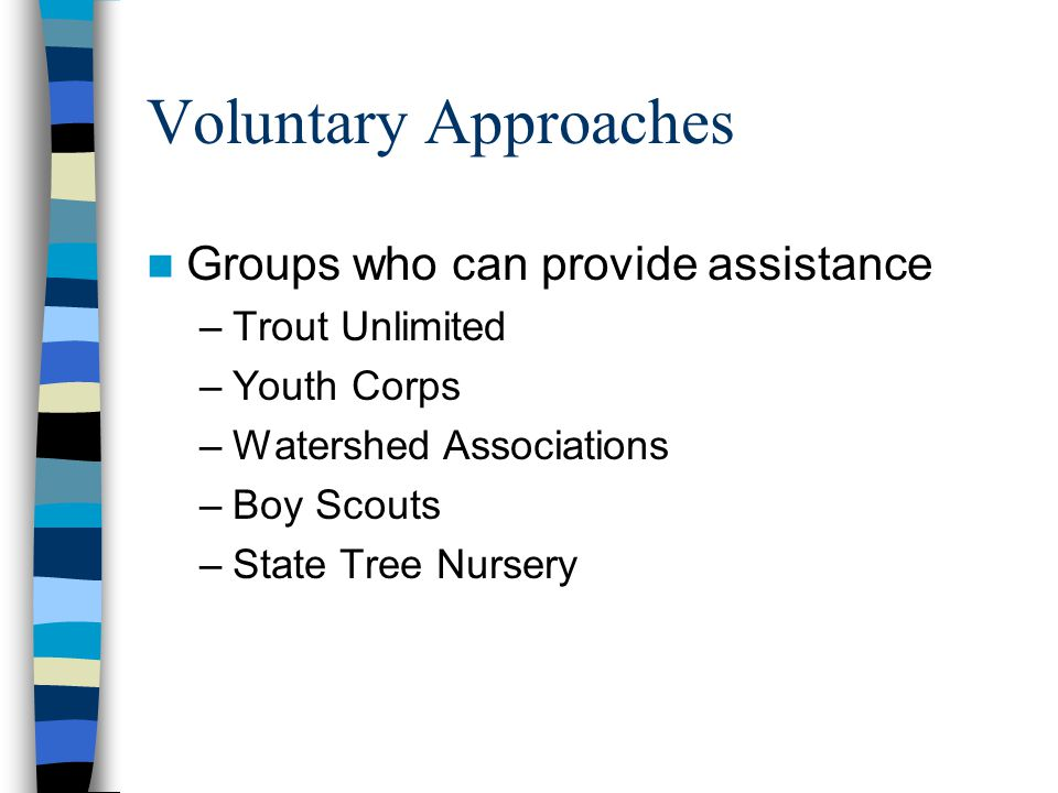 Voluntary Approaches Groups who can provide assistance –Trout Unlimited –Youth Corps –Watershed Associations –Boy Scouts –State Tree Nursery