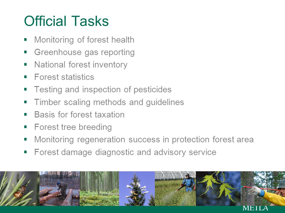 Official Tasks  Monitoring of forest health  Greenhouse gas reporting  National forest inventory  Forest statistics  Testing and inspection of pesticides  Timber scaling methods and guidelines  Basis for forest taxation  Forest tree breeding  Monitoring regeneration success in protection forest area  Forest damage diagnostic and advisory service
