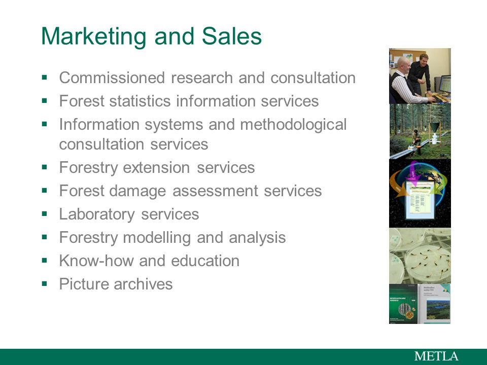 Marketing and Sales  Commissioned research and consultation  Forest statistics information services  Information systems and methodological consultation services  Forestry extension services  Forest damage assessment services  Laboratory services  Forestry modelling and analysis  Know-how and education  Picture archives