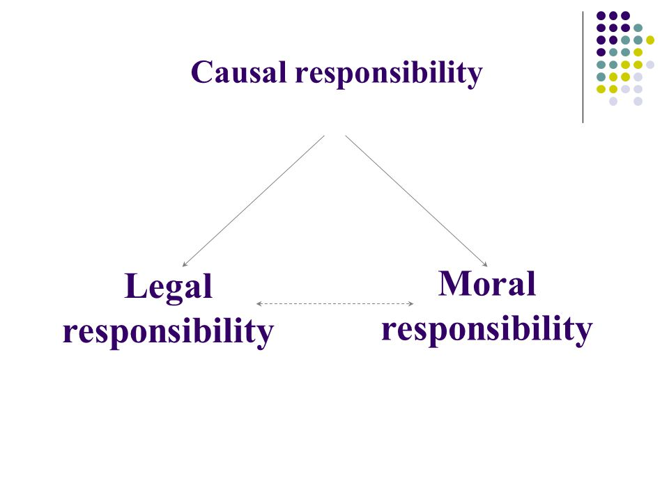 C ausal responsibility Moral responsibility Legal responsibility