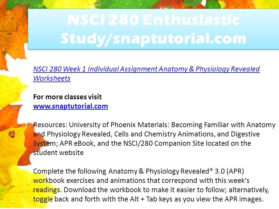 NSCI 280 Enthusiastic Study/snaptutorial.com - ppt download