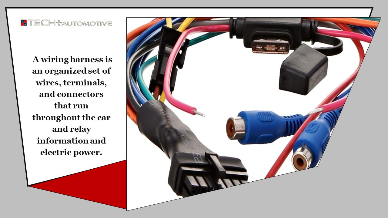 All You Need To Know About The Wiring Harness Ppt Download Wire Ends 3 A Is An Organized Set Of Wires Terminals And Connectors That Run Throughout Car Relay Information Electric Power