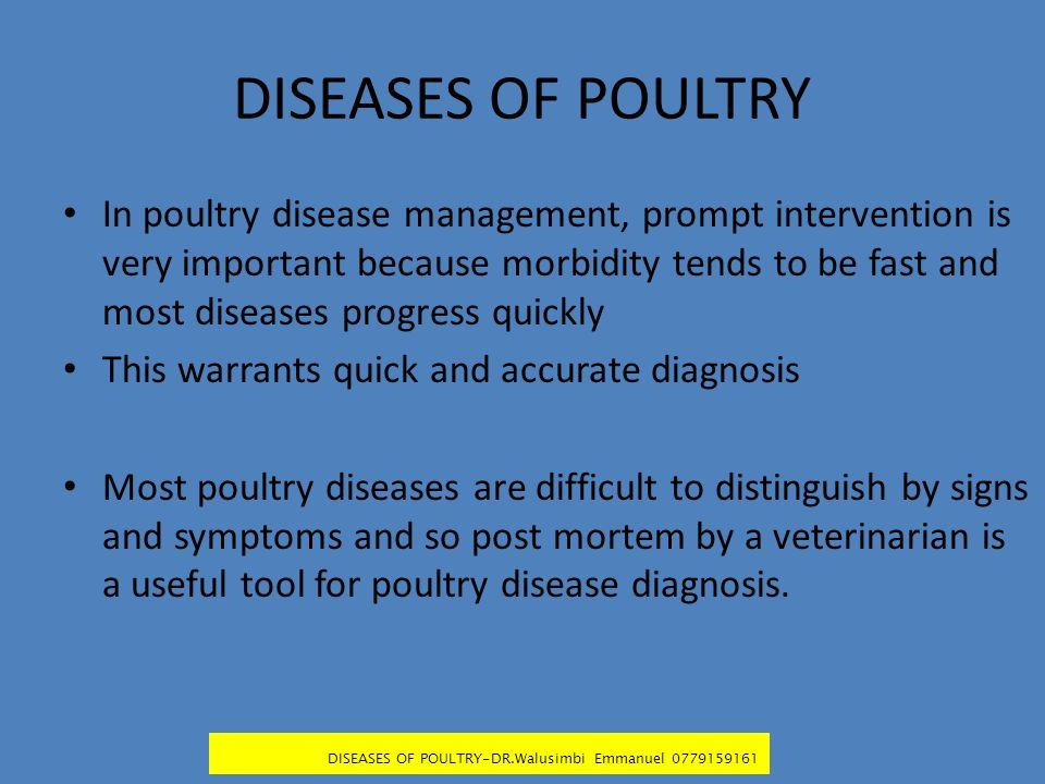 COMMON DISEASES OF POULTRY LECTURE NOTES BY: DR  EMMANUEL