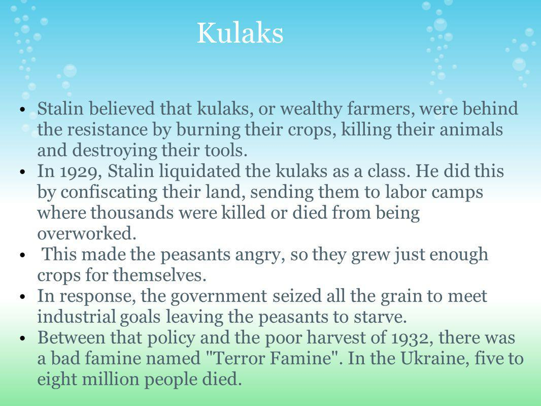 Kulaks Stalin believed that kulaks, or wealthy farmers, were behind the resistance by burning their crops, killing their animals and destroying their tools.